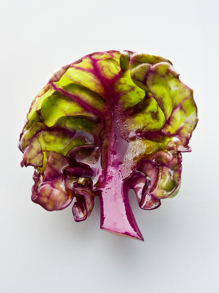 Brussel sprout leaf, detail from Hare and Shallot with Pascal Barbot © Richard Haughton