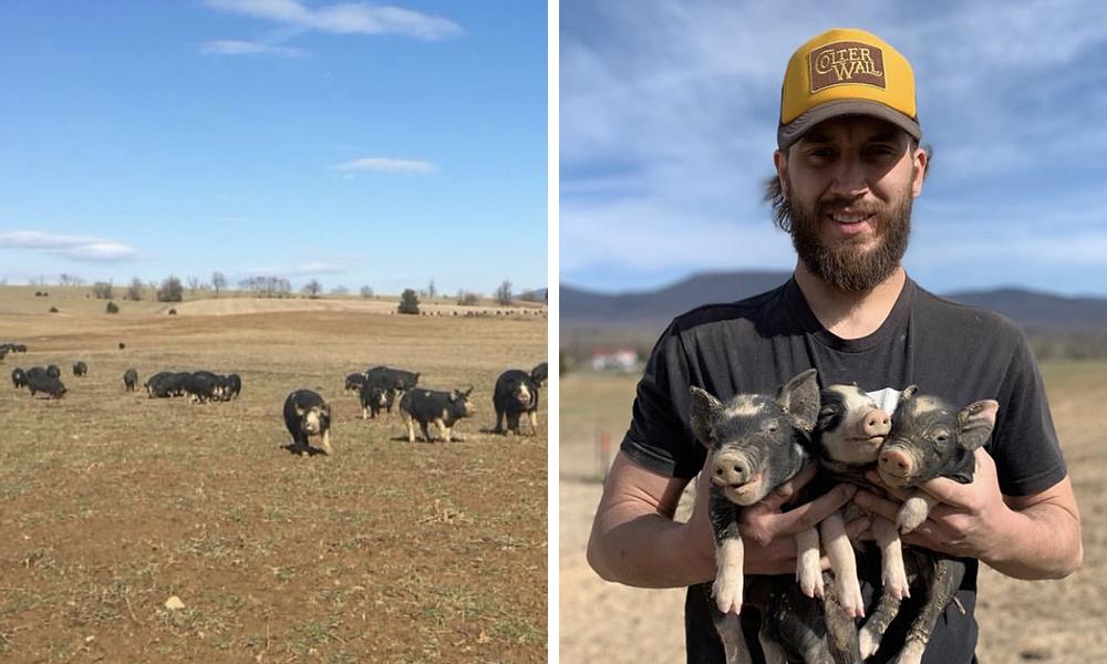 Tyler Trainum of Autumn Olive Farms, Shenandoah Valley, VA