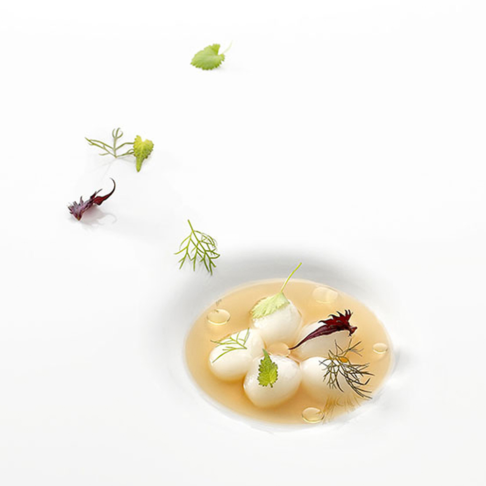Mugaritz A Natural Science Of Cooking Pdf